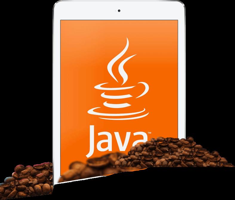 Почему именно Java для разработки приложений?